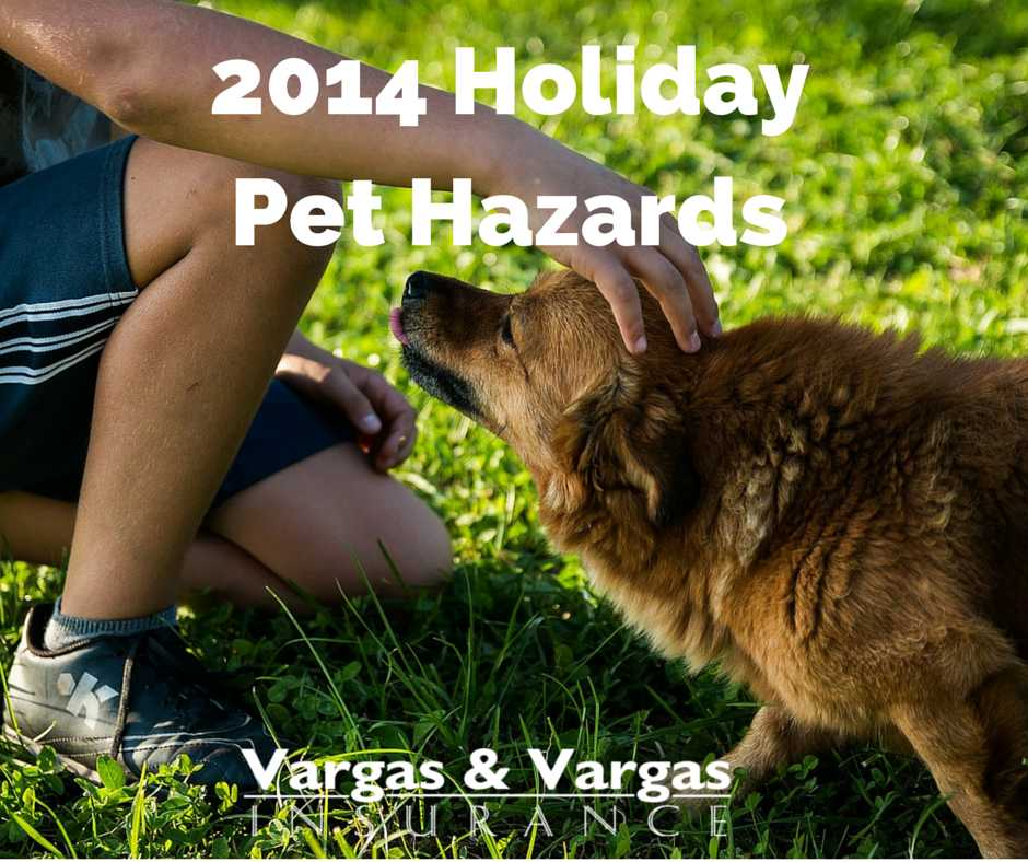 2014 Holiday Pet Hazards